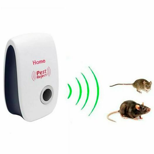 Ультразвук от крыс и мышей